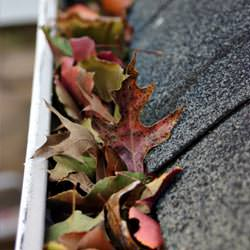 Clogged gutters filled with fall leaves  in Antigonish