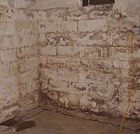 Peeling, Chipping, Basement Wall Coatings in Oromocto